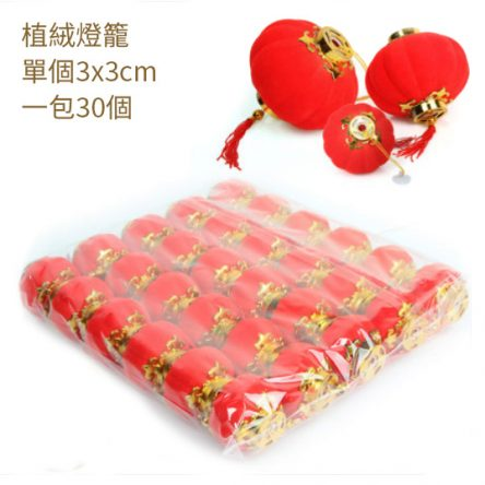 Waterproof Small Red Lantern (free shipping)